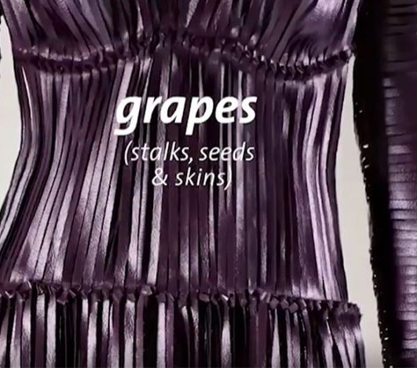 A womenswear dress made out of grapes